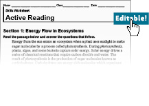 active reading worksheets