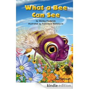 What a Bee can See